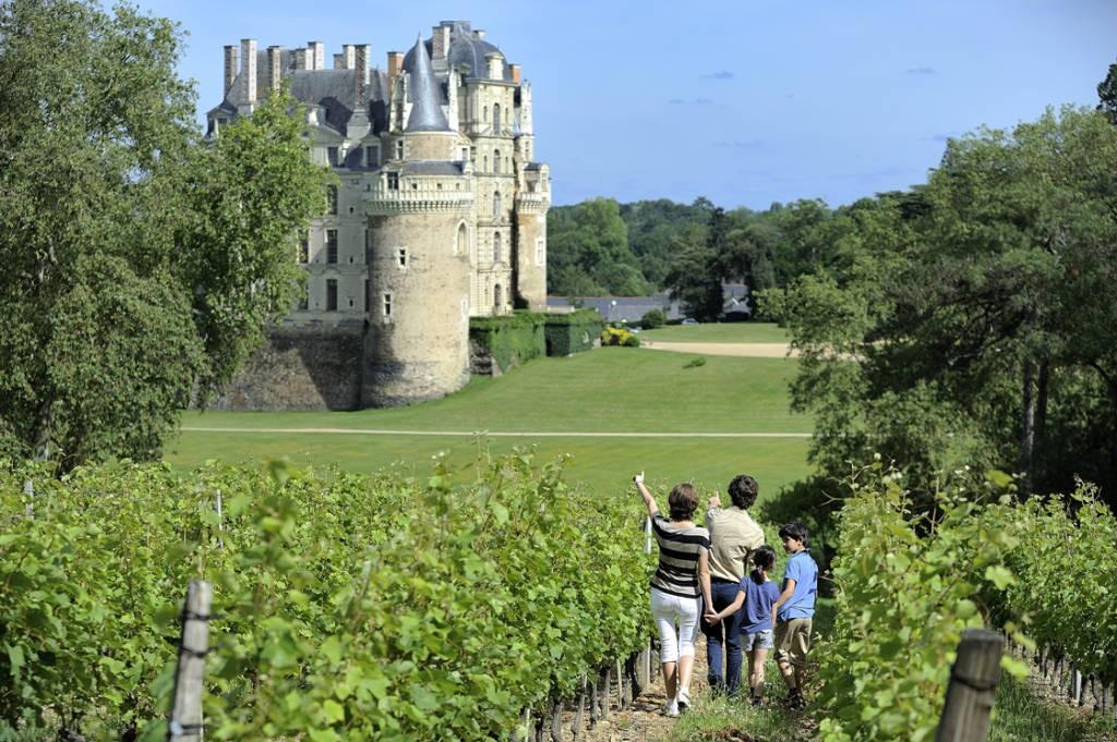 Routes Des Vins Chateau De Brissac Et Vignobles De L Aubance