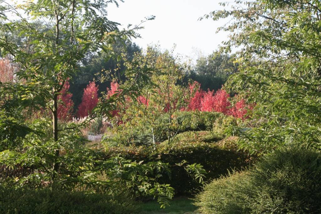 le jardin botanique d 39 alkinoos parcs et jardins en pays de la loire. Black Bedroom Furniture Sets. Home Design Ideas