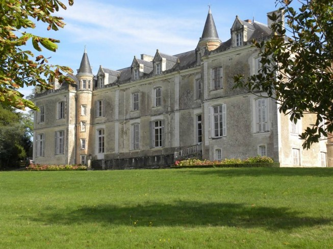 chateau du coing de saint fiacre autour du vin et des vignobles en pays de la loire. Black Bedroom Furniture Sets. Home Design Ideas