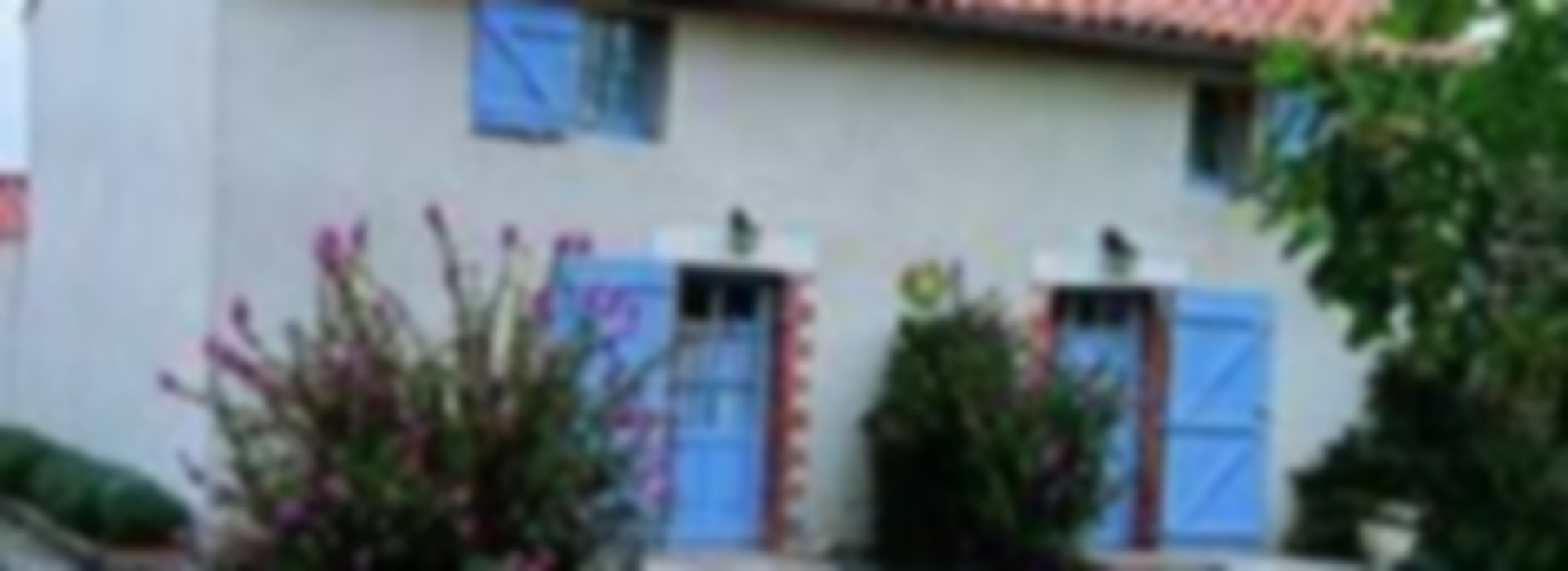 LOCATION DE VACANCES GITES DE FRANCE 85G156206