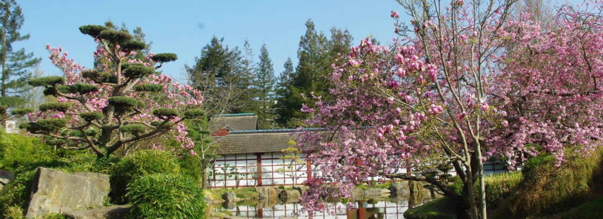Ile de versailles parcs et jardins en pays de la loire - Une maison un jardin berthenay versailles ...
