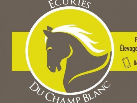 Ecuries/élevage du Champ Blanc