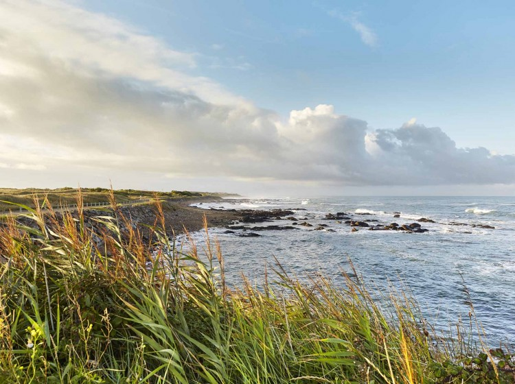 Les Plus Beaux Sentiers Cotiers Cote Atlantique France