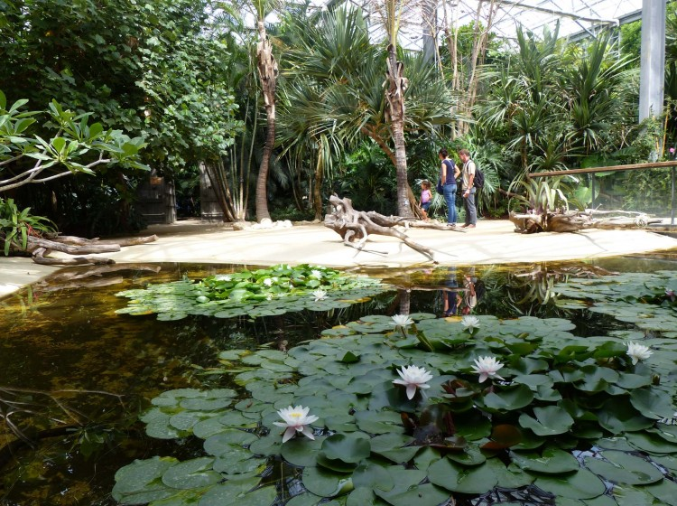 Terra botanica un jardin extraordinaire sites de for Un jardin extraordinaire